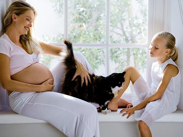 Токсоплазмоз опасен для беременных