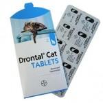Дронтал: эффективное средство от глистов у кошек