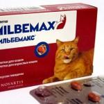 Мильбемакс для профилактики и лечения глистов у кошек