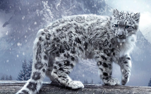 большая грациозная кошка