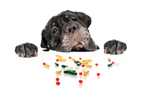 отравление лекарственными препаратами