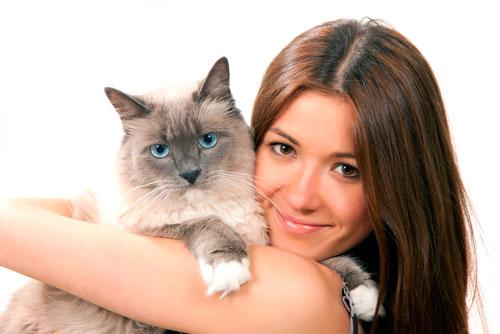 заботливая хозяйка и кошка