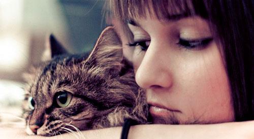 хозяйка ласкает кота
