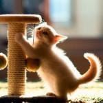 Самодельная когтеточка: рациональное решение острой проблемы