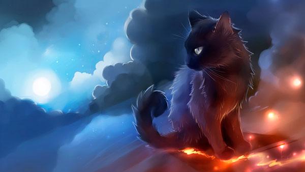 умиротворенный кот