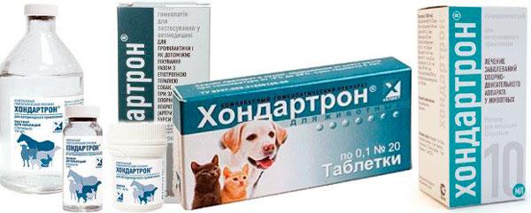 Гомеопатический препарат Хондартрон