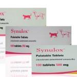 Синулокс для собак: антибиотик против инфекций