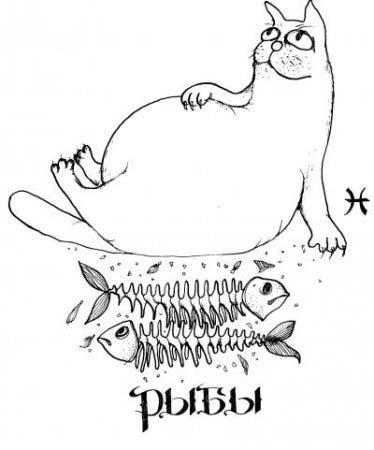 кошки Рыбы