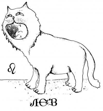 коты Львы