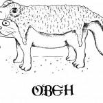 Кошачий гороскоп: как влияют звезды на характер домашнего питомца
