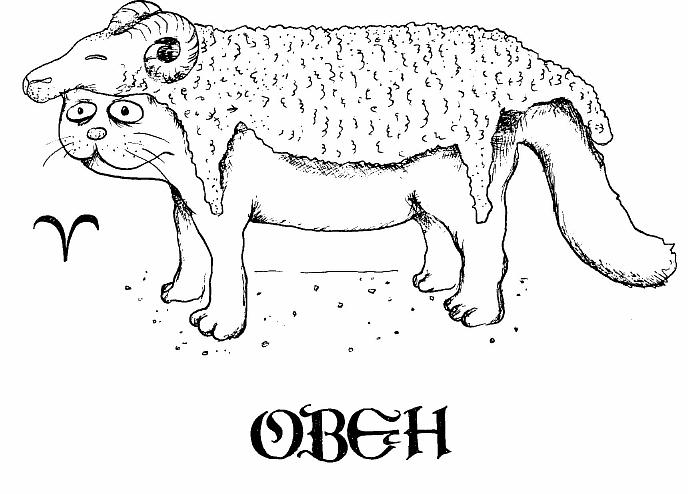 кот Овен