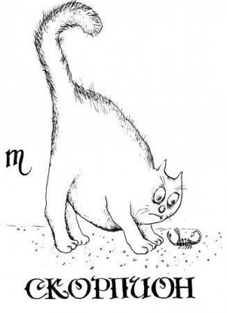 кот Скорпион
