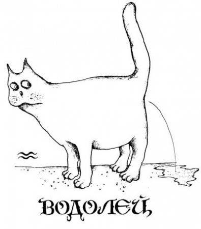 кот Водолей